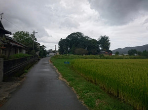 Tsukiyama_kofun01_2